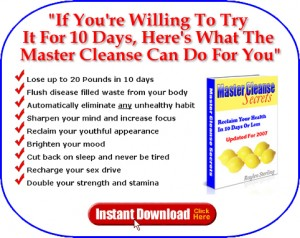master cleanse system download