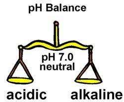whatfoodsto properly balance ph levels