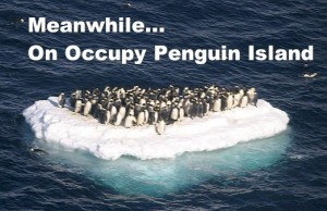 meanwhileonoccupypenguinisland