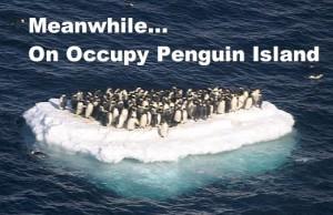 meanwhileonoccupypenguinisland