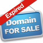 How To Steps On Buying That Perfect Expired Domain Name