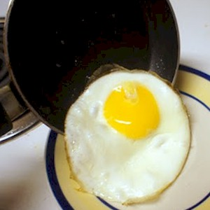 toxins are like your brain on drugs in a frying pan