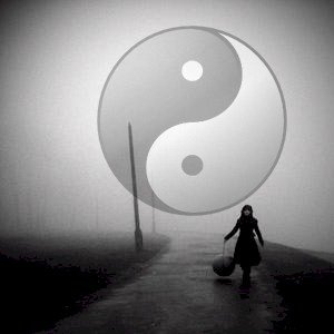 yin yang brought to modern day
