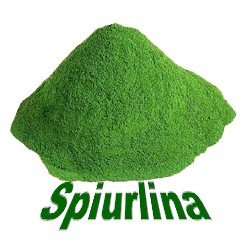 what is spirulina and its benefits