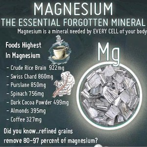 why taking magnesium is important