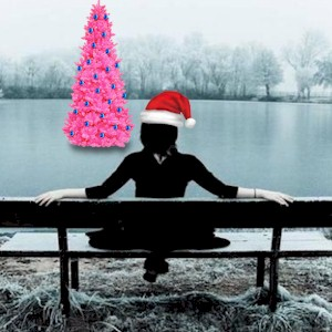 enjoy the holidays alone