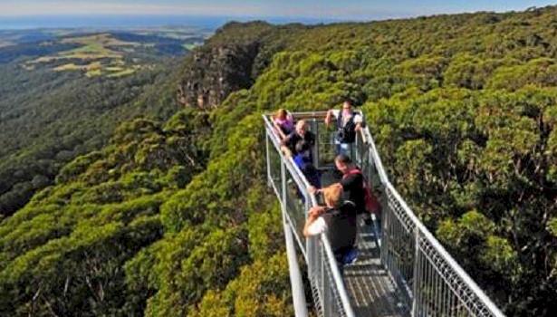 Illawarra Tree Walk Australia